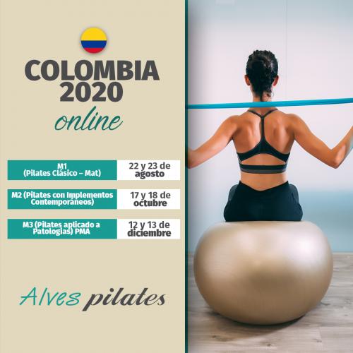 curso online colombia 2020